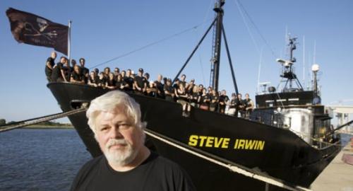 Sea Shepherd: lanciata una nuova sfida contro il Giappone